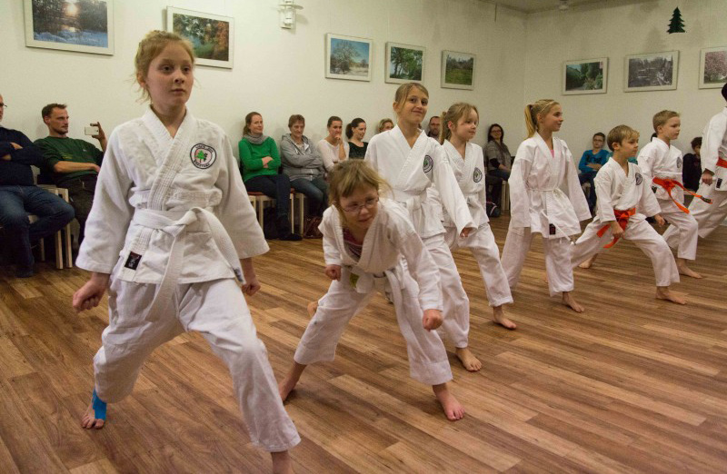 Demonstration der Karate Kindergruppe