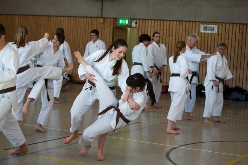 Bunkai ( Anwendung ) aus einer Karate Kata